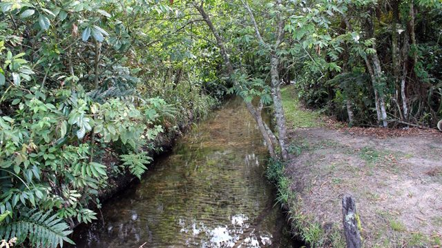 Córrego da Minhoca | Serviço Autônomo de Água e Esgoto de Brotas